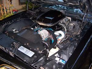 My engine compartment now after taking the opportunity of pulling the motor to replace the rear main seal to spruce things up a bit.
